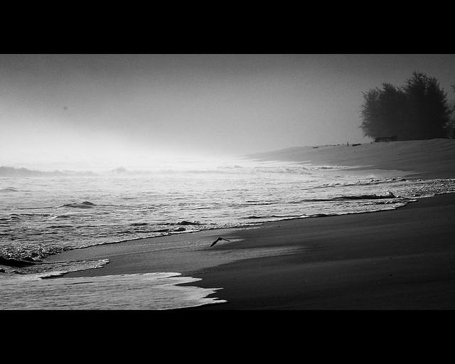 Remembering The Monsoon II (_DSC5950)