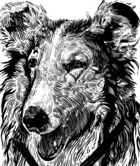 lassie artline by kal