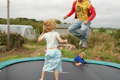 child, trampolining--equipment and supplies, play, leisure, trampoline, toddler,