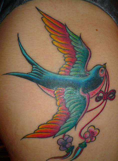 Old school swallow tattoo 2 weeks after flickr photo for Tattoos that last 2 weeks