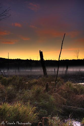 morning sunrise dawn dam massachusetts beaver swamp hdr sanctuary wachusett aplusphoto