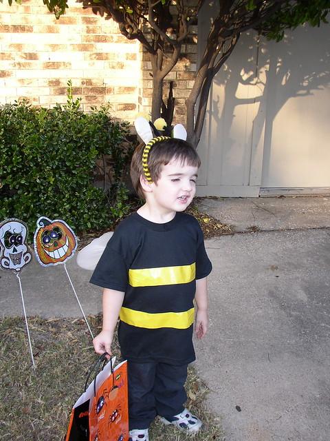 Bee Squint
