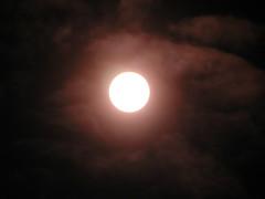 sun 016
