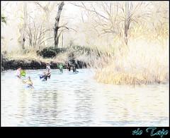 esas tardes de invierno y el río Tajo