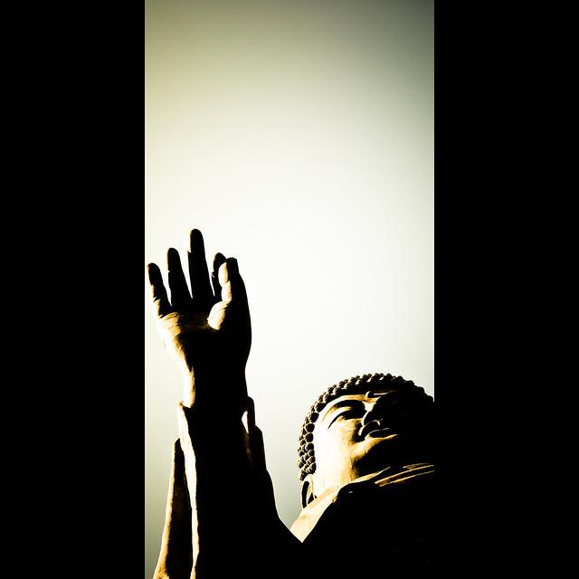 Verticals: Buddha's hand