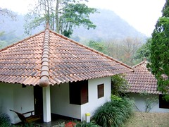 thatching(0.0), outdoor structure(0.0), gazebo(0.0), hut(1.0), roof(1.0), property(1.0), cottage(1.0),