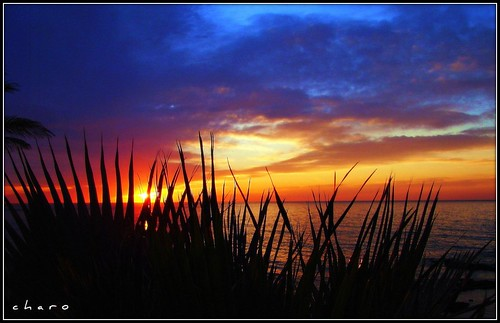 sunrise amanecer chapeau charo malaga soe benalmadena mywinners shieldofexcellence tarifa2007 artlegacy worldwidelandscapes 100commentgroup