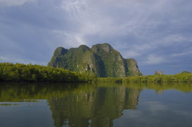 Manglares en la Bahía de Phang Nga. Tailandia