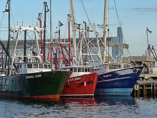 Fleet of New Bedford | by }{enry