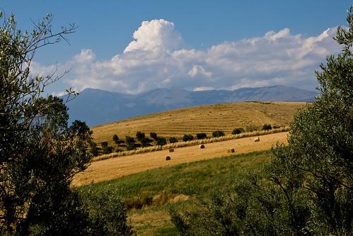 panorama landscape