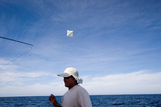 Kite fishing flickr photo sharing for Kite fishing for tuna