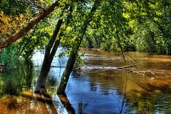 River Set 1 - 09-17-2008