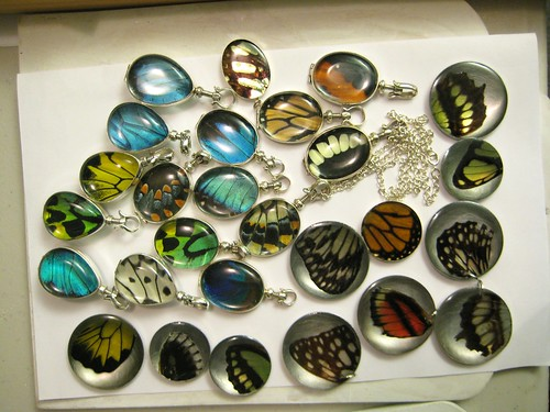 craft show madness!! real butterfly wing jewelry handmade