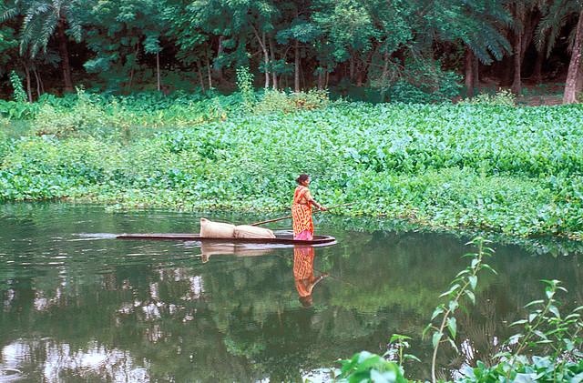 Bangladesh , CC WorldFish