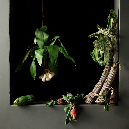 Paulette Tavormina, Cardoon and Radishes, after J.S.C. (from the series Natura Morta), 2010