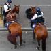 18 juillet 2008 Saint-Denis 25- Près du Stade de France Meeting Gaz de France Policiers et chevaux Une petite pause ©melina1965