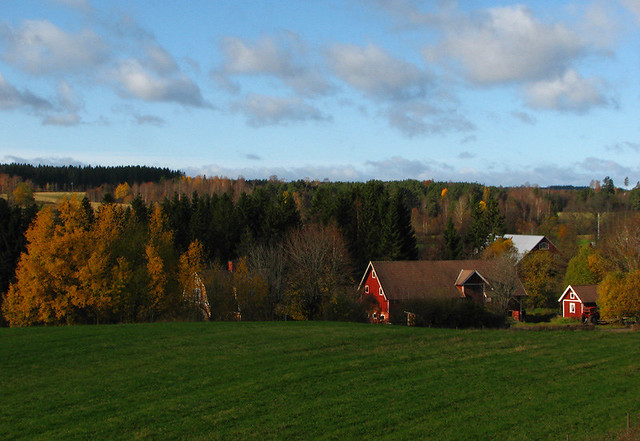Landscape in Småland