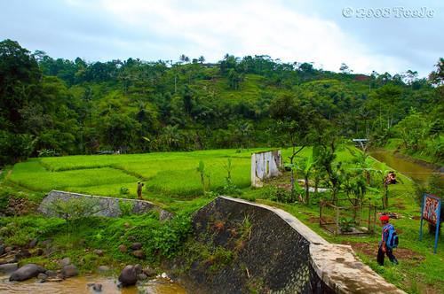 indonesia westjava nikkor garut d300 tasikmalaya teeje colorphotoaward kampungnaga
