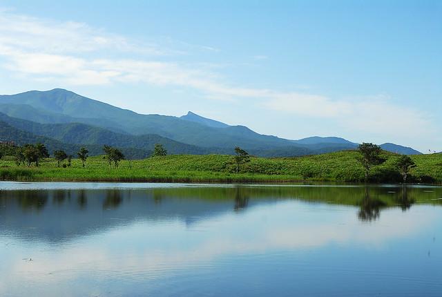 【 JTB北海道旅行ランキング1位 】日本が誇る自然遺産!知床大自然満喫 3日間の旅