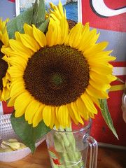 asterales, flower arranging, sunflower seed, sunflower, flower, yellow, floral design, plant, produce, flower bouquet, floristry,