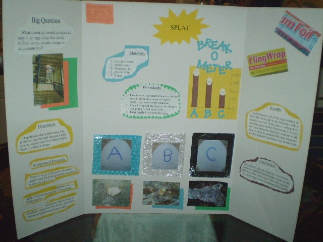 science fair projects with eggs