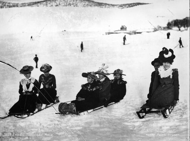 Ladies' toboggan race