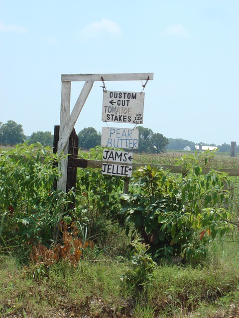 Amish Community of Mississippi