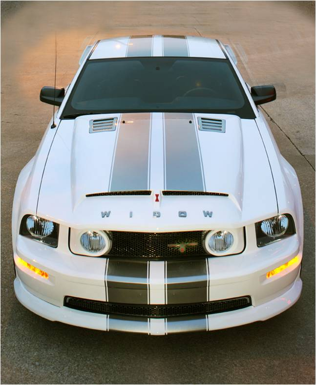 Black Mustang Silvers: SCx Mustang Black Widow In White