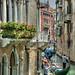 Venice by dai oni