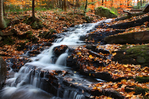 longexposure autumn fall nature water colors leaves waterfall leaf colorful long exposure maine