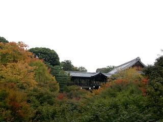 東福寺 @ 2008-11-09