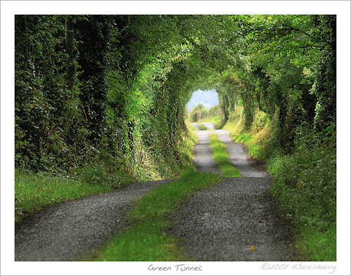 road ireland green grass rain landscape published clare good tunnel selection irland exhibition best bushes soe hdr middleearth hobbiton éire nto tonemapped tonemapping specnature abigfave shieldofexcellence findingireland anawesomeshot superaplus aplusphoto fineimage platinumheartaward brickalleycafe irlgallery noshington titlerotate