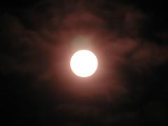 sun 015