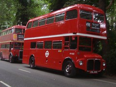 red bus2