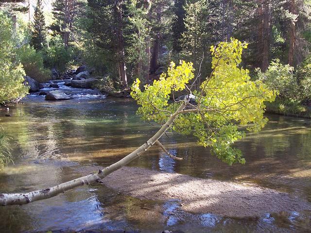 Bishop creek flickr photo sharing for Bishop creek fishing