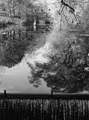 mt holyoke waterfall reflecting pond black white
