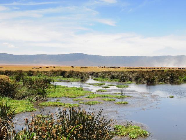 Vista de las lagunas del cráter del Ngorongoro, Tanzania.