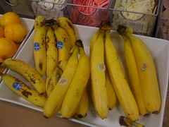 vegetable(0.0), summer squash(0.0), plant(0.0), cooking plantain(1.0), banana(1.0), yellow(1.0), produce(1.0), fruit(1.0), food(1.0),