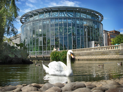 Mowbray Park Pond Swan and Winter Gardens Sunderland | by theunderstudy