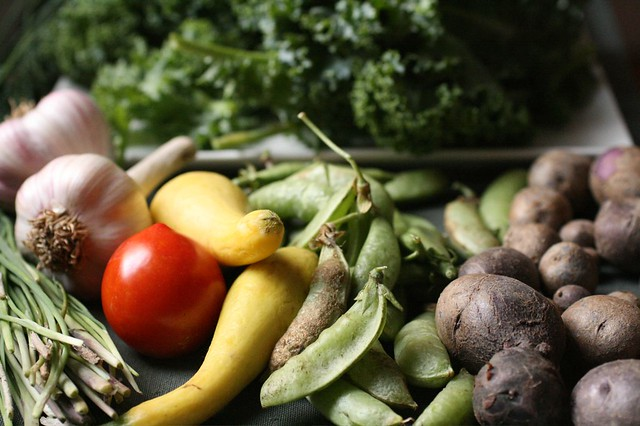 Clagett Farm CSA Week 8