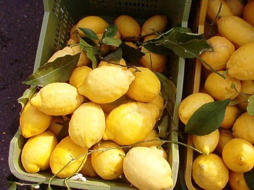 Amalfi Coast - Sfusato Lemon