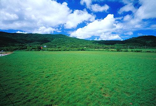 T536屏東滿州大草原