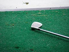 grass(0.0), cue stick(0.0), net(0.0), golf club(1.0), green(1.0), golf equipment(1.0),