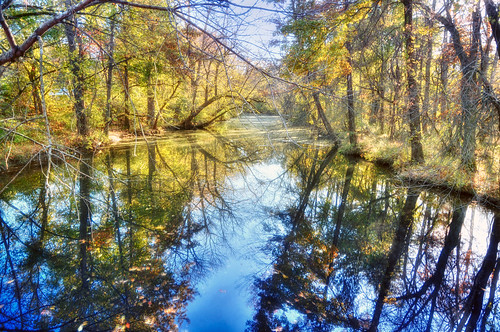 autumn reflection fall water leaves geotagged canal newjersey nj princeton hdr mudpig stevekelley