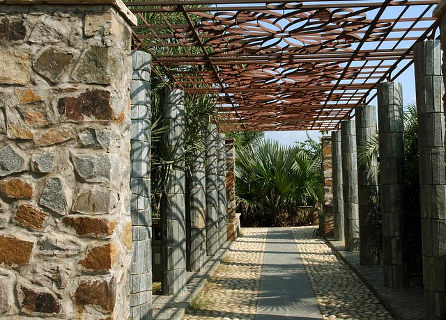 pergola definition meaning