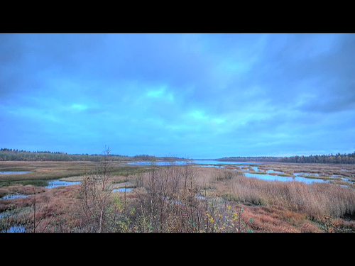 lake motion water grass clouds sunrise dawn timelapse video marsh hdr hdrvideo