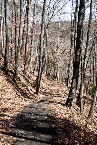 georgia waterfall amicalola amicalolafallsstatepark
