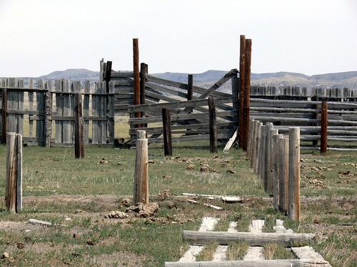20090830 34 Cattle Stockade near Arminto, WY
