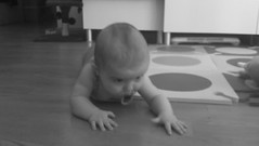 child, infant, crawling, monochrome photography, monochrome, black-and-white, person, toddler,