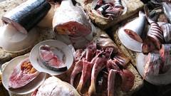 Fish for sale @ Hoi An Market